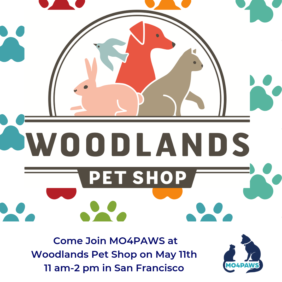 Come Join MO4PAWS at Woodlands Pet Shop.PNG