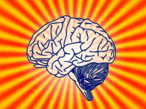 PAIN IS A PROTECTIVE MECHANISM CREATED BY THE BRAIN - Add description here?