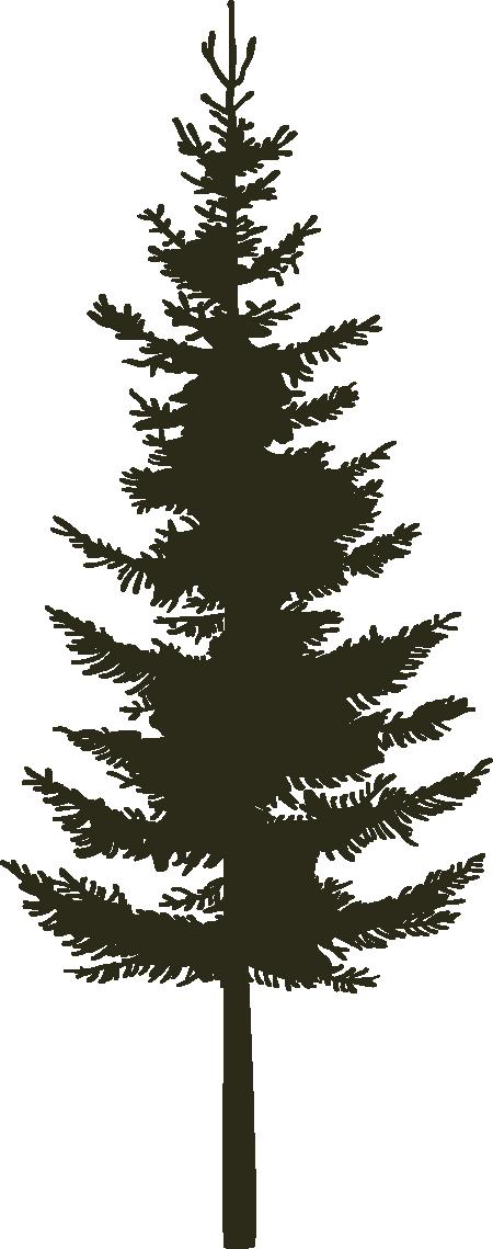 Single Pine - Black.png