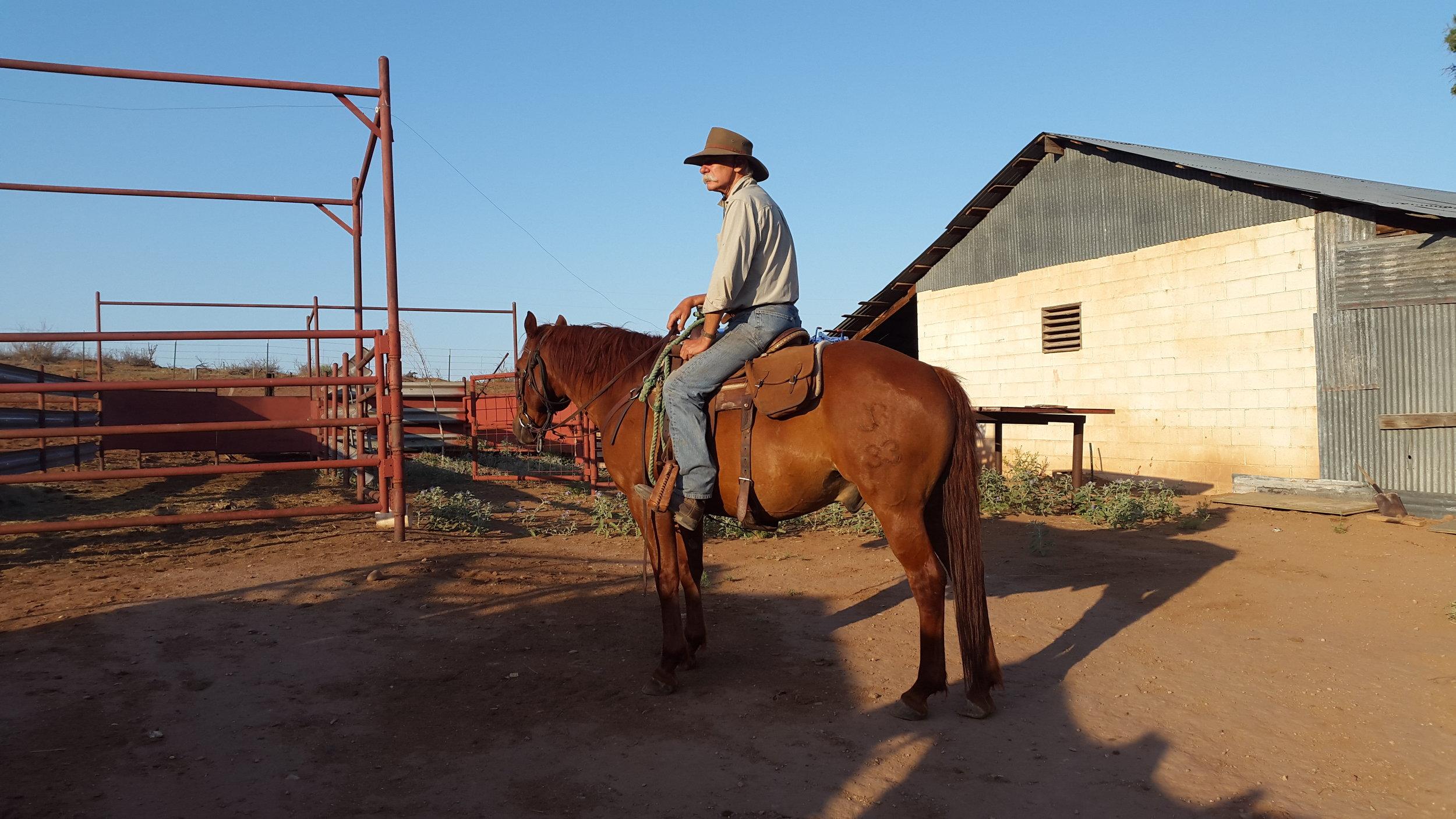 Paul on Butch was also with us, I just did not get a chance of a picture during the cattle drive ;-)  Paul auf Butch war auch dabei, ich hatte nur nicht die Chance während des Viehtriebs ein Foto von ihm zu machen ;-)