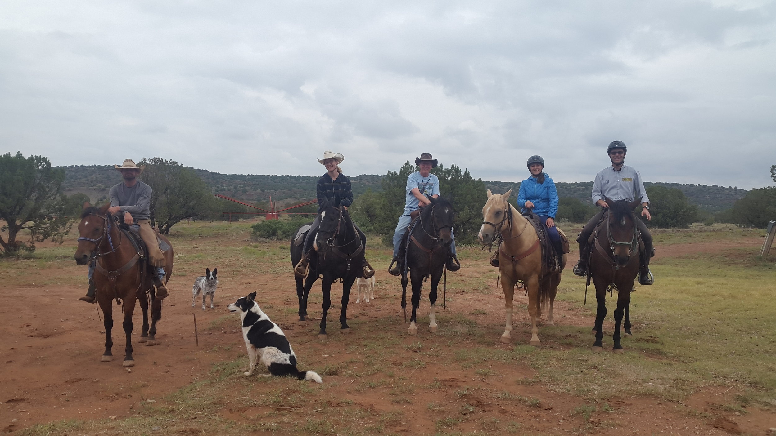 Every once in a while it happens: A cloudy day in September. The riders about to head out on the trail (left to right): Rob on Cooter, Leonie on Harry, Stu on Ricky, Lina on Johnny and Holger on Hank.  Ganz ab und zu passiert es: Ein bewölkter Tag im September. Die Reiter kurz vor dem Ausritt (links nach rechts): Rob auf Cooter, Leonie auf Harry, Stu auf Ricky, Lina auf Johnny und Holger auf Hank.