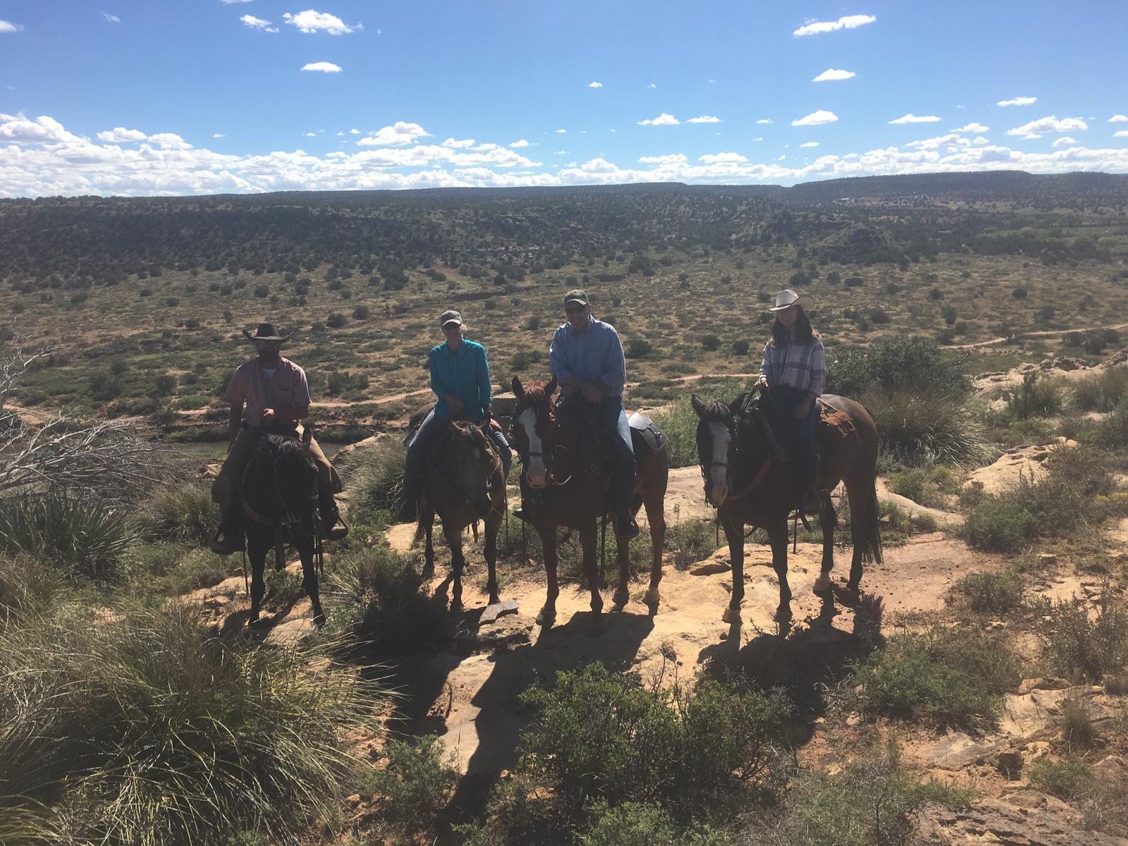 The weather got warmer again - that´s New Mexico - one never knows, what to expect ;-) Here (left to right) the riders at one of the many overviews on the ranch: Rob on Newt, Heike on King, Tom on Champ and Julia on Blaze.  Das Wetter wurde wieder wärmer - so ist das in New Mexico - man weiss nie, was einen erwartet ;-) Hier (links nach rechts) die Reiter an einem der zahlreichen Aussichtspunkte der Ranch: Rob auf Newt, Heike auf King, Tom auf Champ und Julia auf Blaze.
