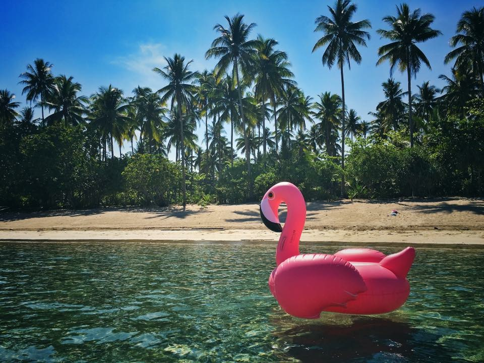 A Sunnylife flamingo swims on the crystal clear waters of Rizal, the Philippines