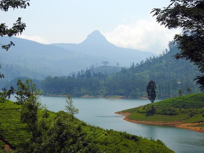 Adam's Peak, Sri Lanka. Photo Credit: Rehman Abubakr