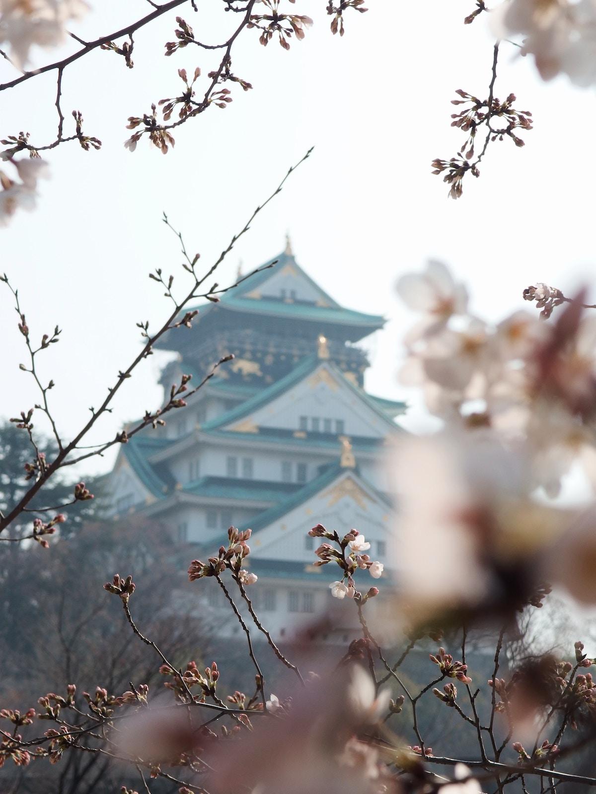 Osaka Castle, Ōsaka-shi, Japan yu-kato.jpg