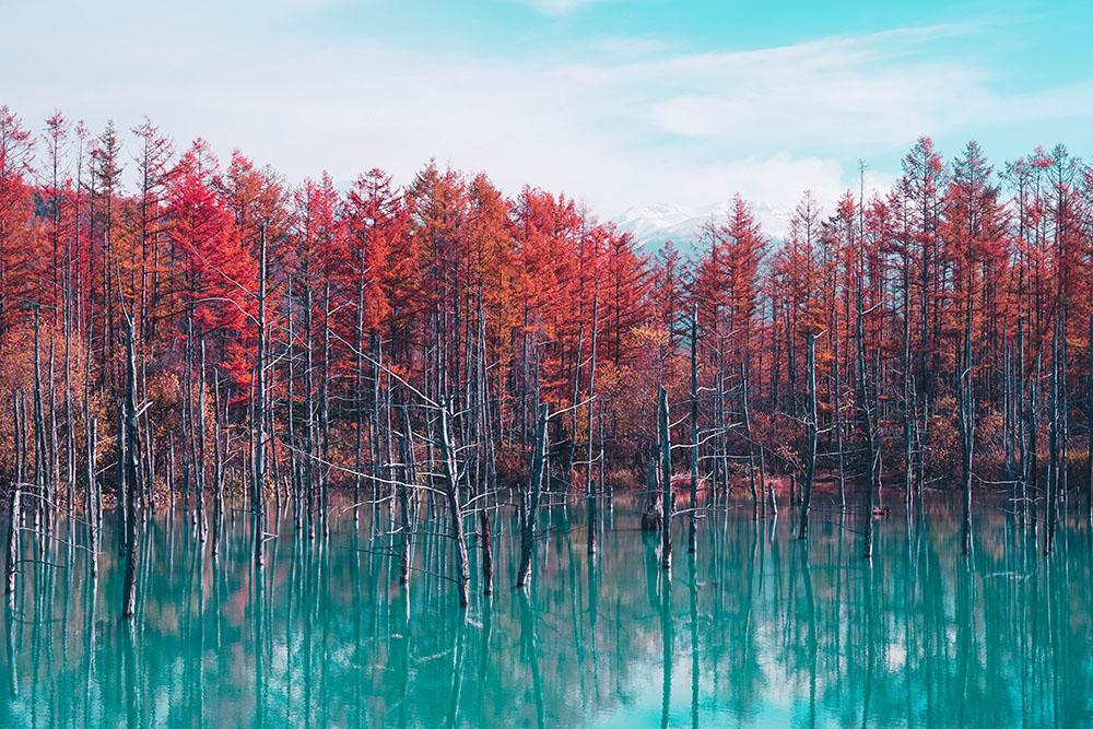 Lake Toya, Hokkaido, Japan. Photo Credit: Jarret Kow