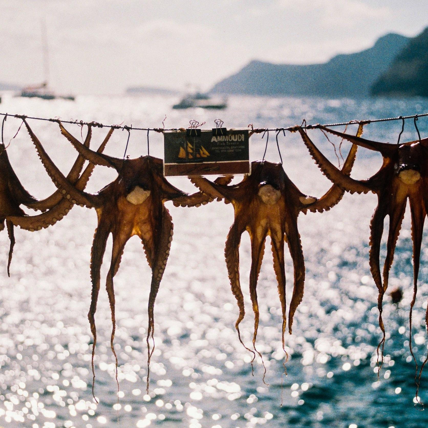 Ammoudi, Santorini, Greece Simon Peel.jpg