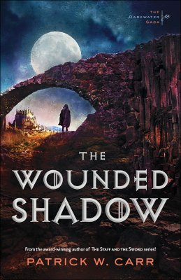 the wounded shadow'.jpg