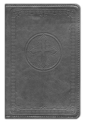 niv pocket bible.jpg