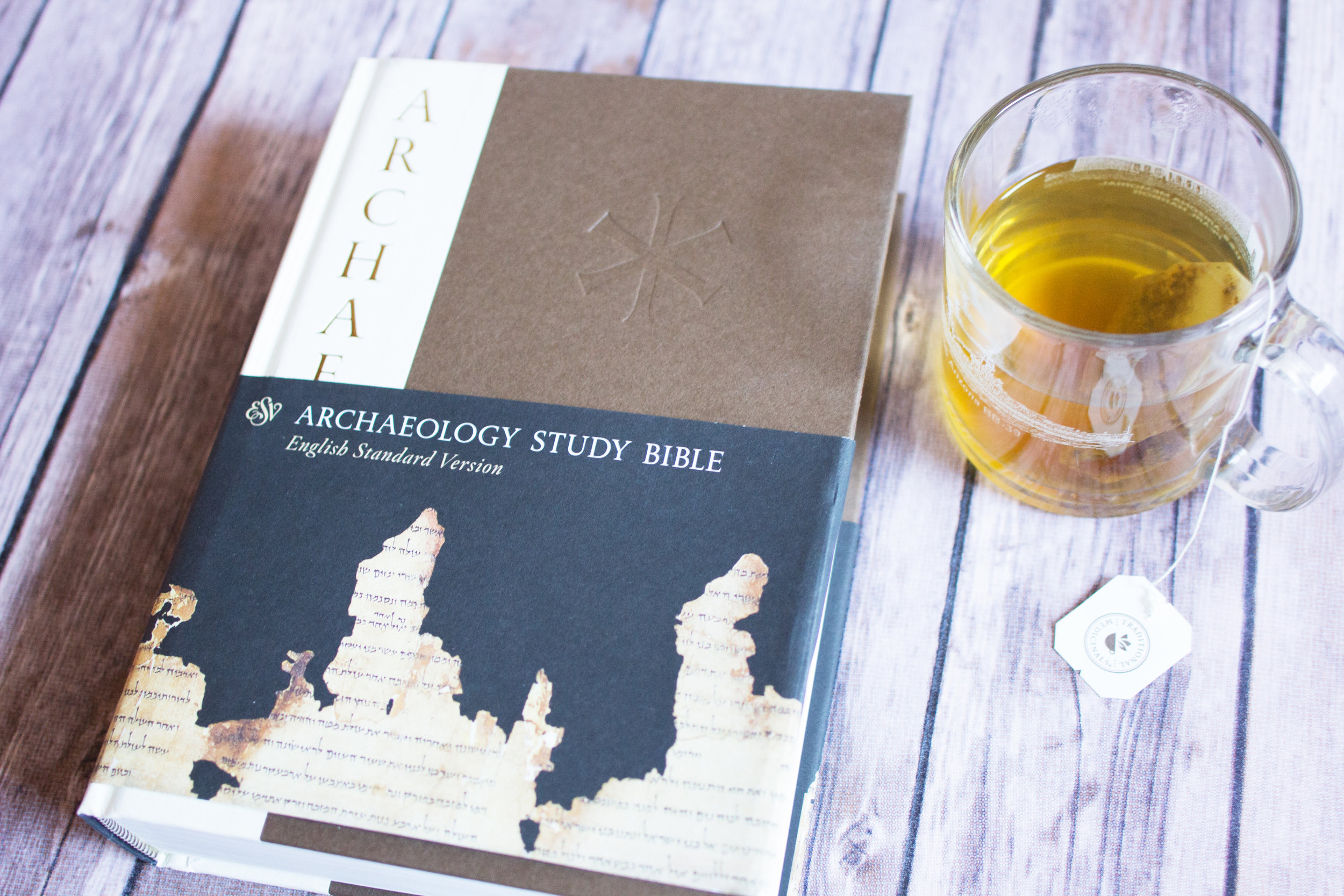 archaeology study bible review