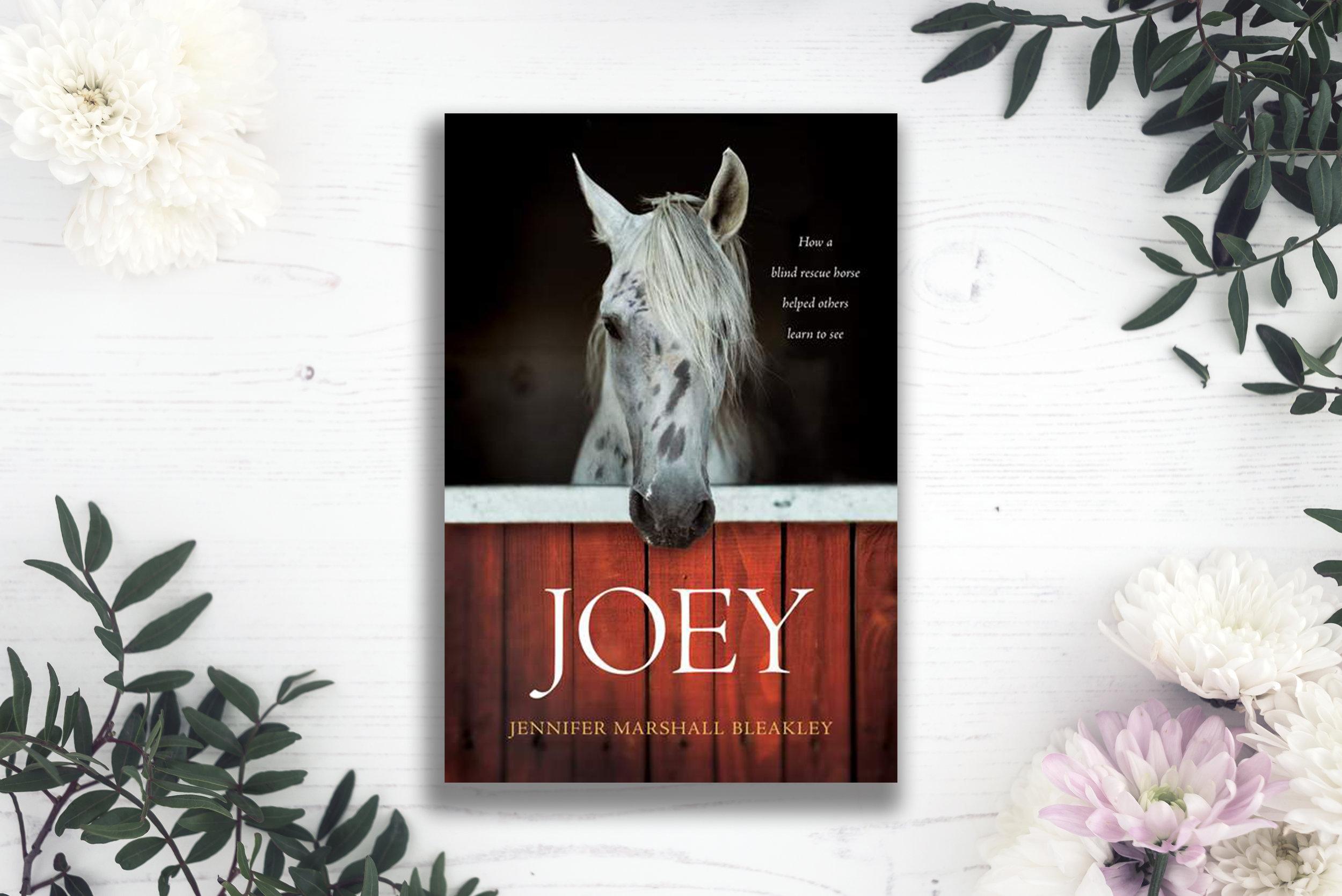 joey jennifer marshall bleakley book reivew