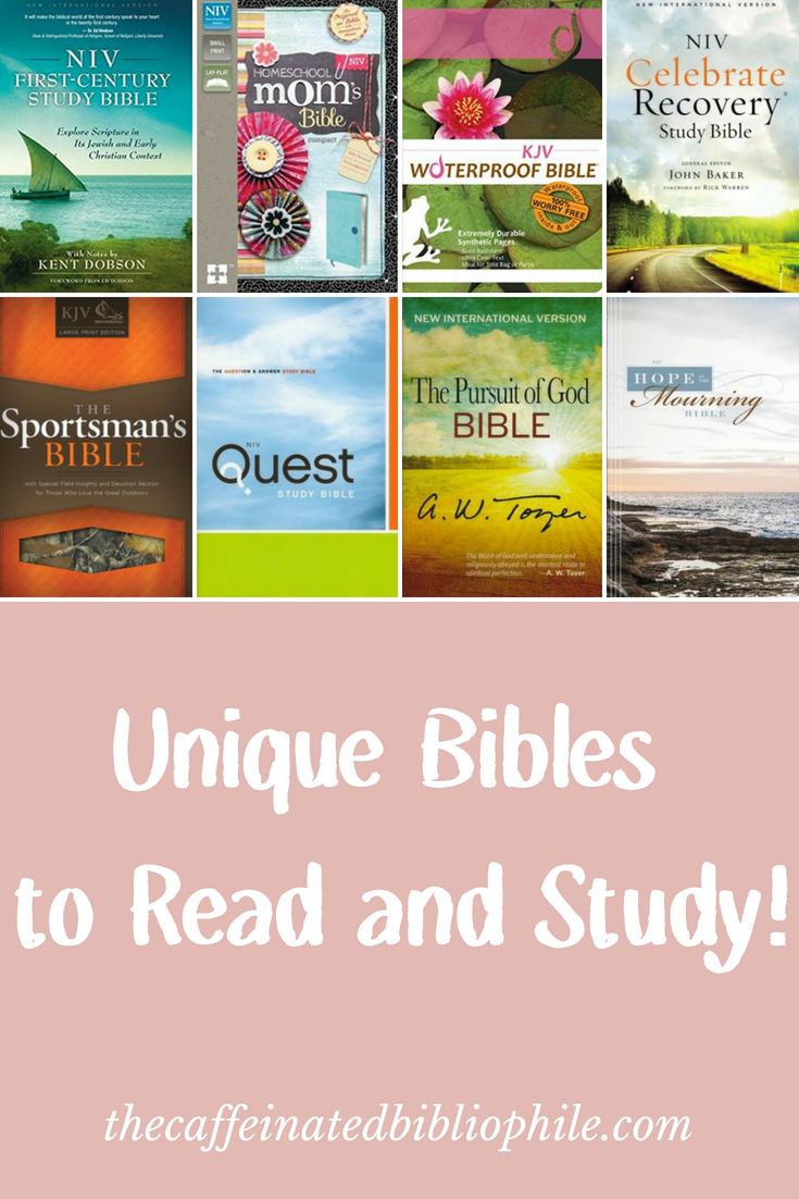 unique bibles to read and study