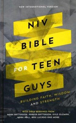 niv bible for teen guys.jpg