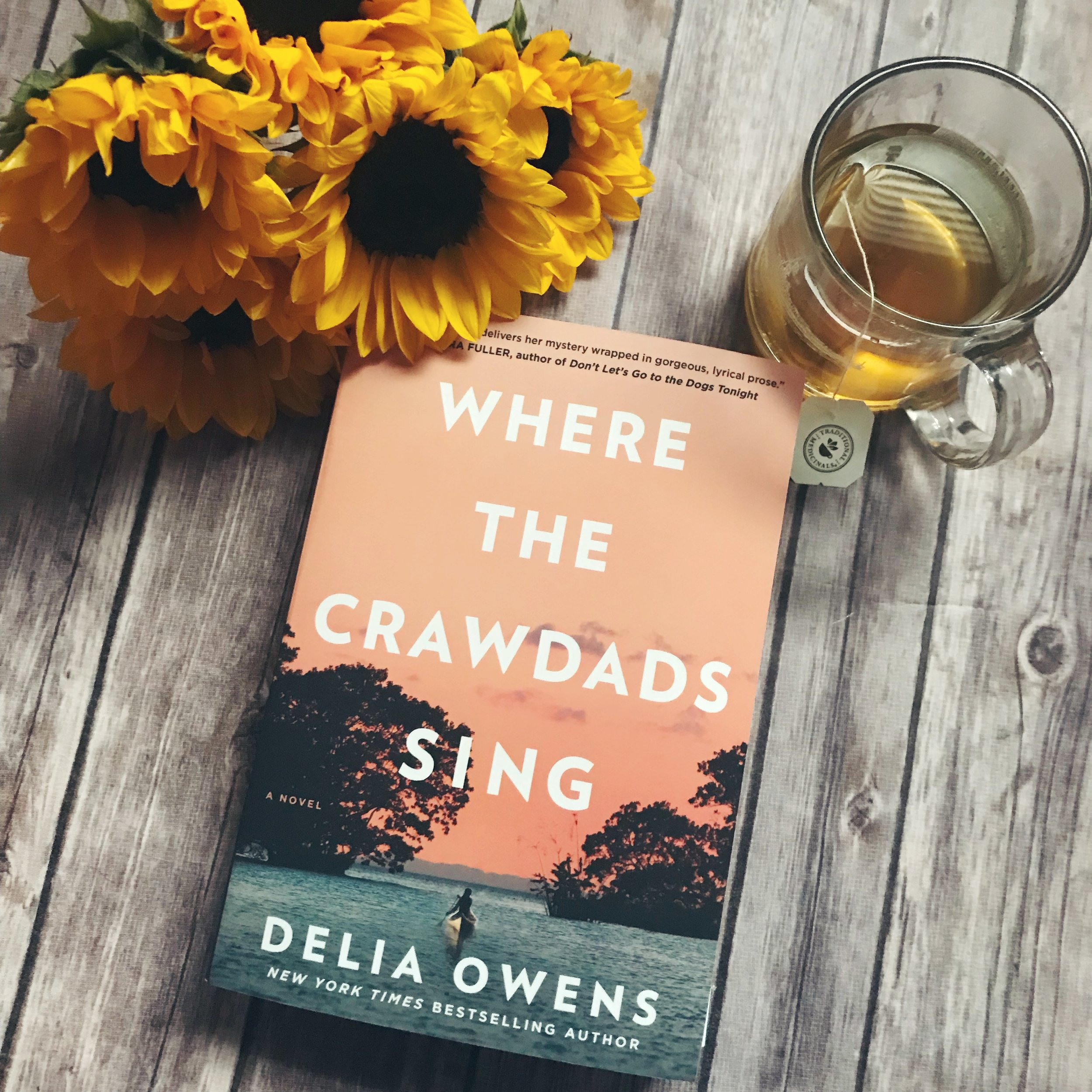 where the crawdads sing delia owens book review