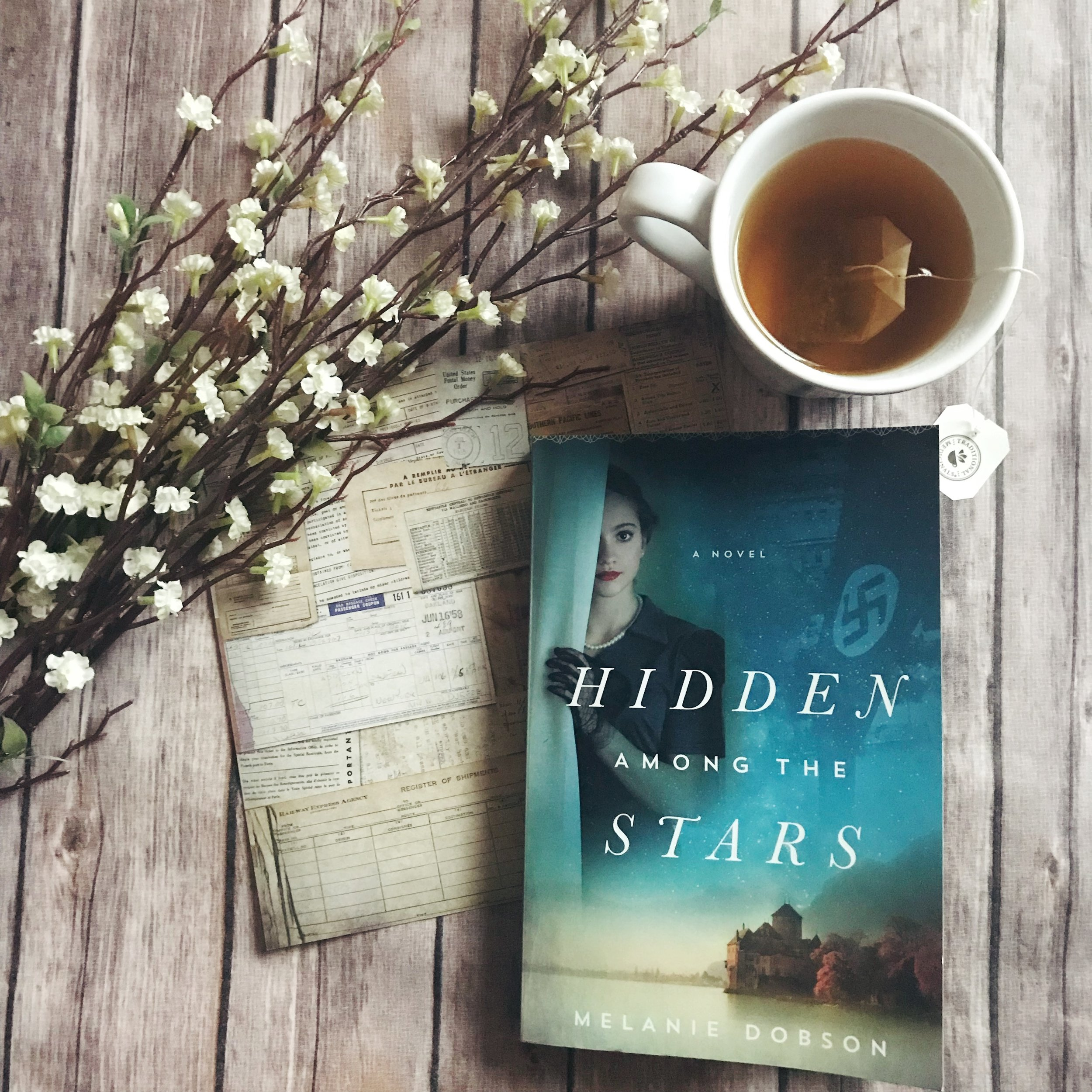 hidden among the stars by melanie dobson book review