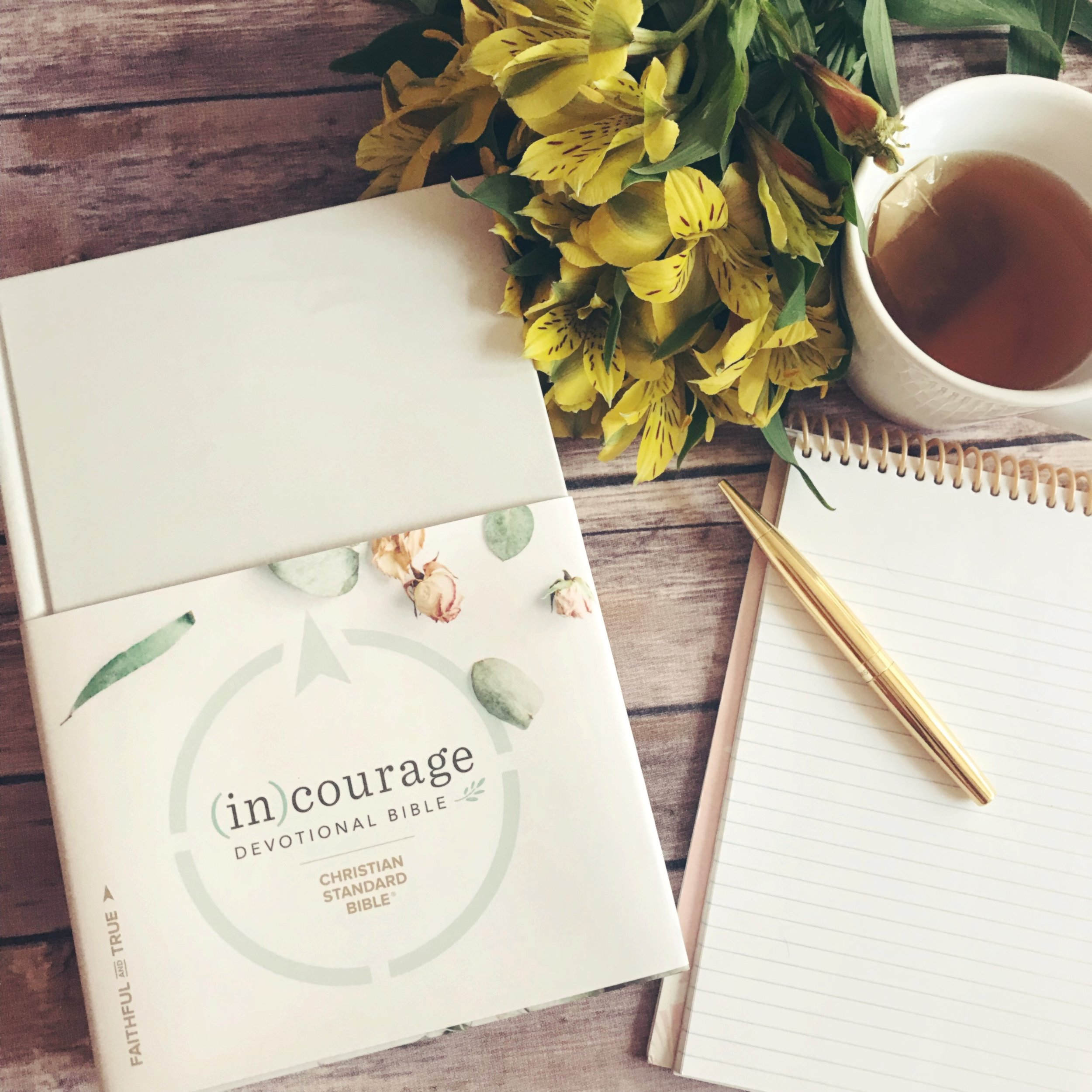 (IN) Courage Devotional Bible Review