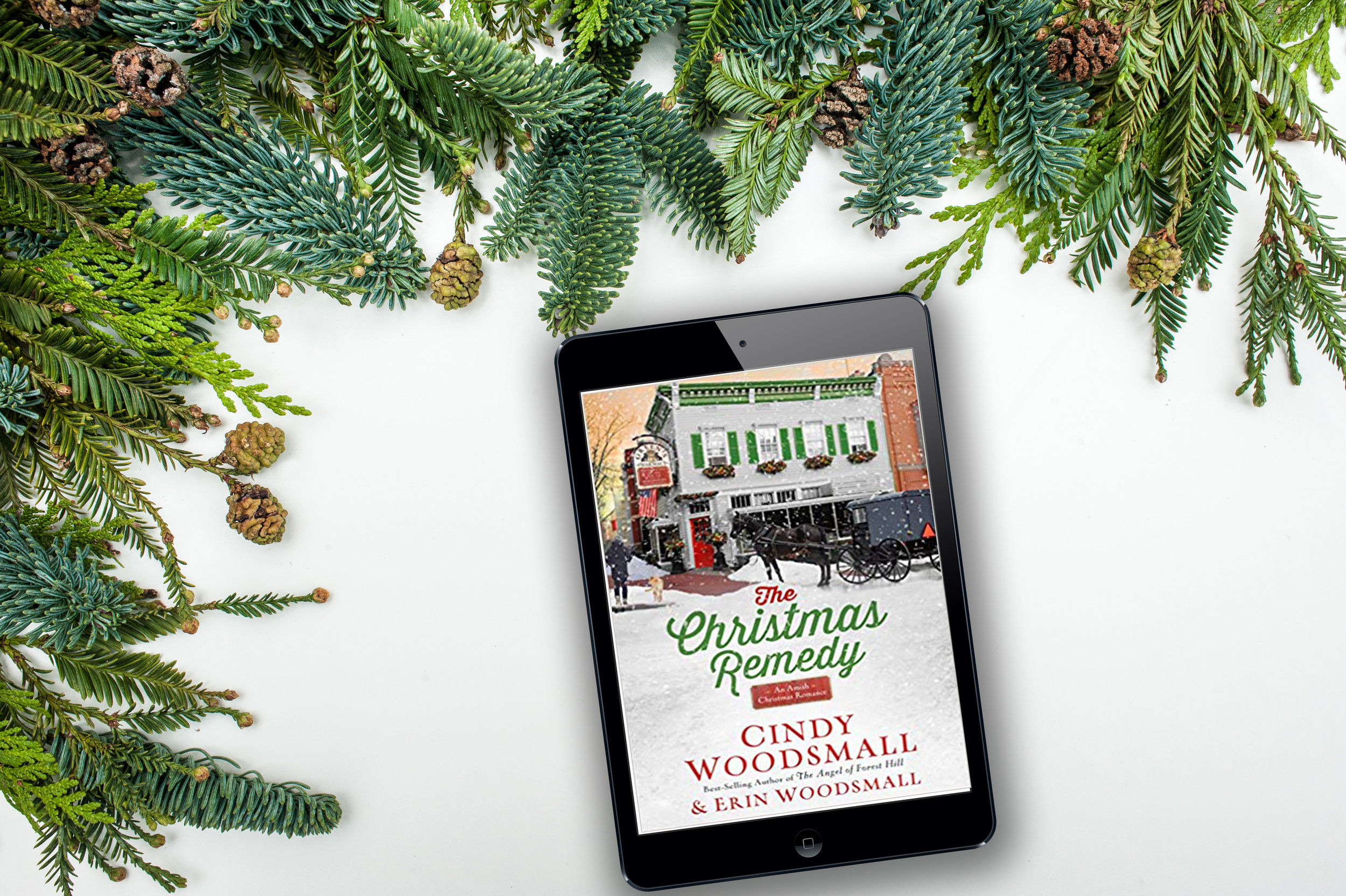 the christmas remedy cindy woodsmall and erin woodsmall book review