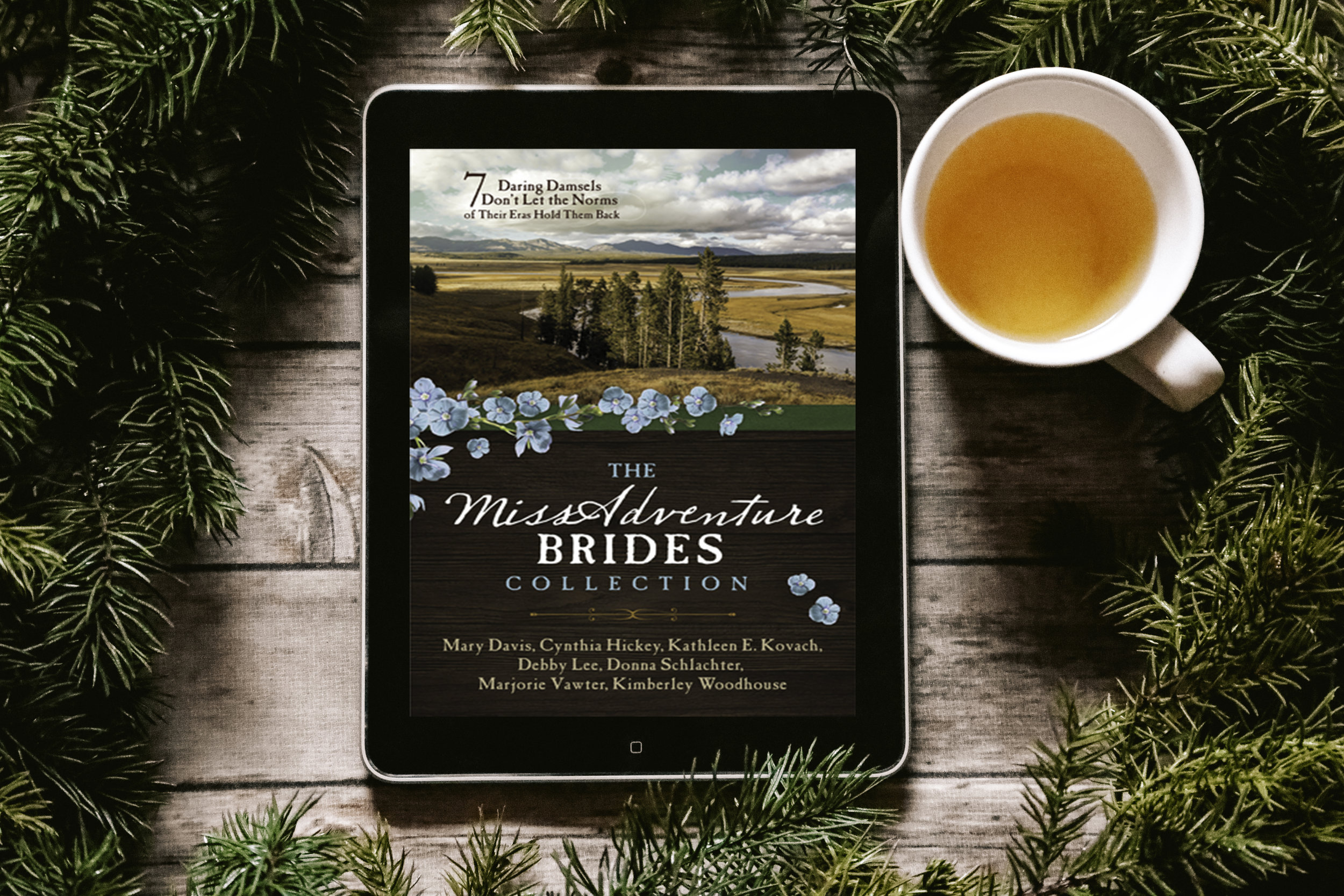 miss adventure brides collection spotlight and excerpt