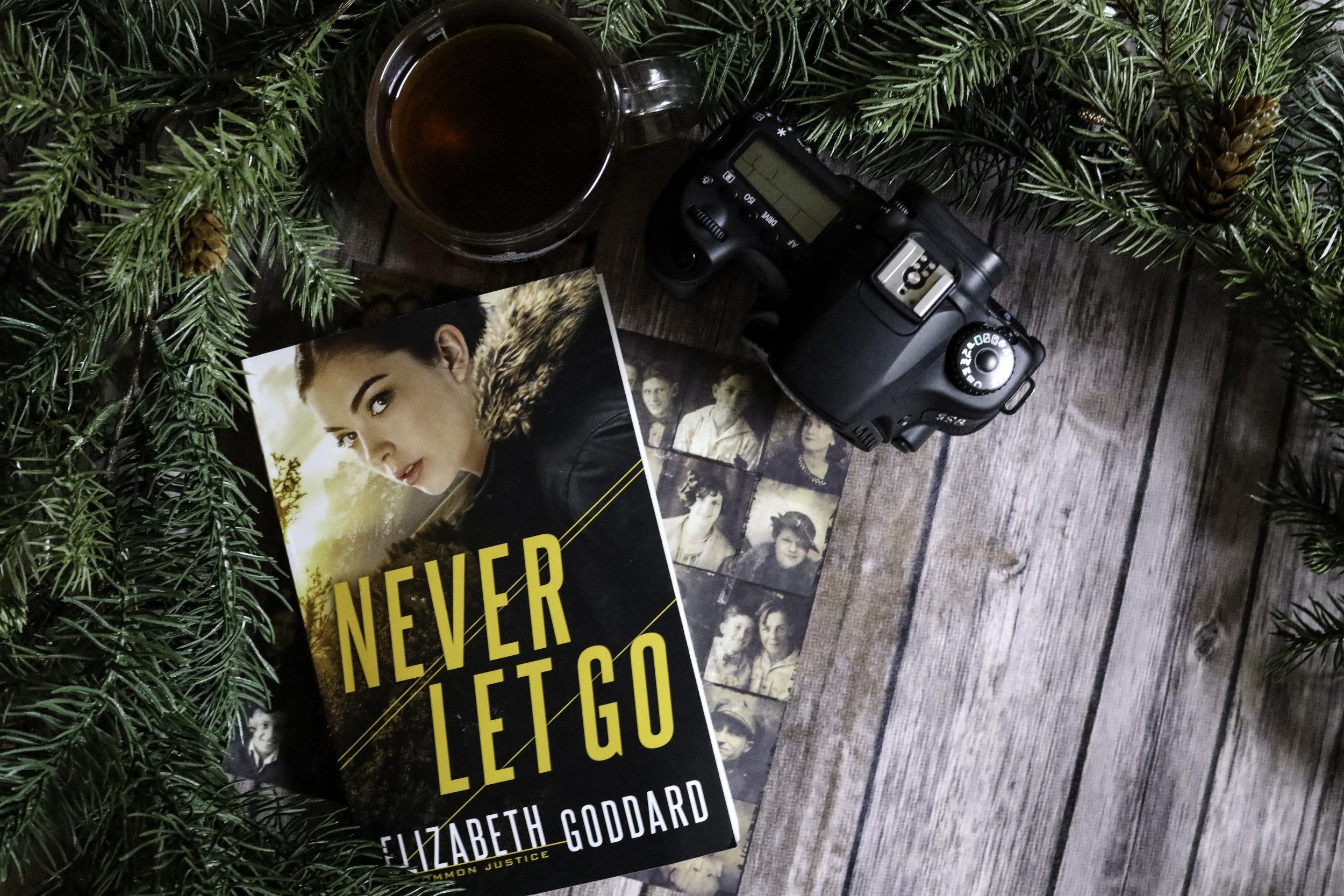 never let go elizabeth goddard book review