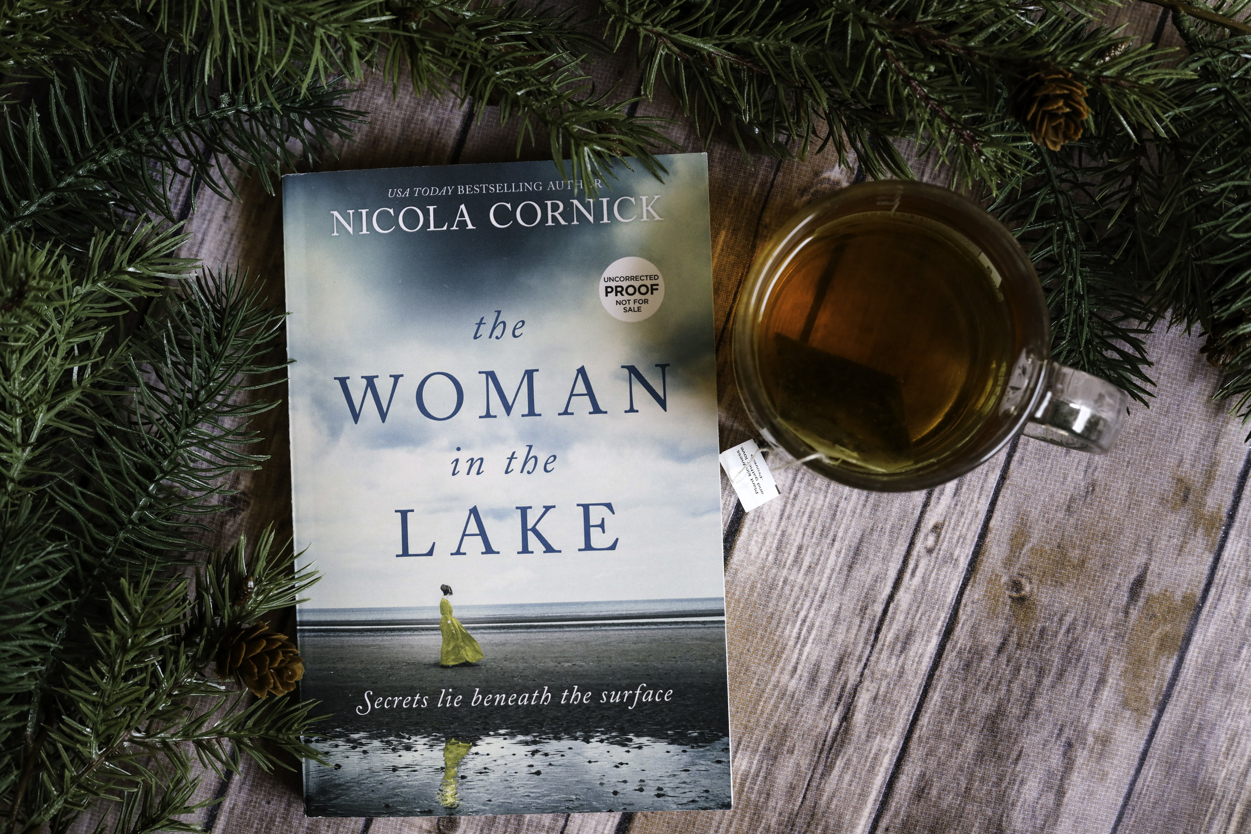 the women in the lake by nicola cornick book review