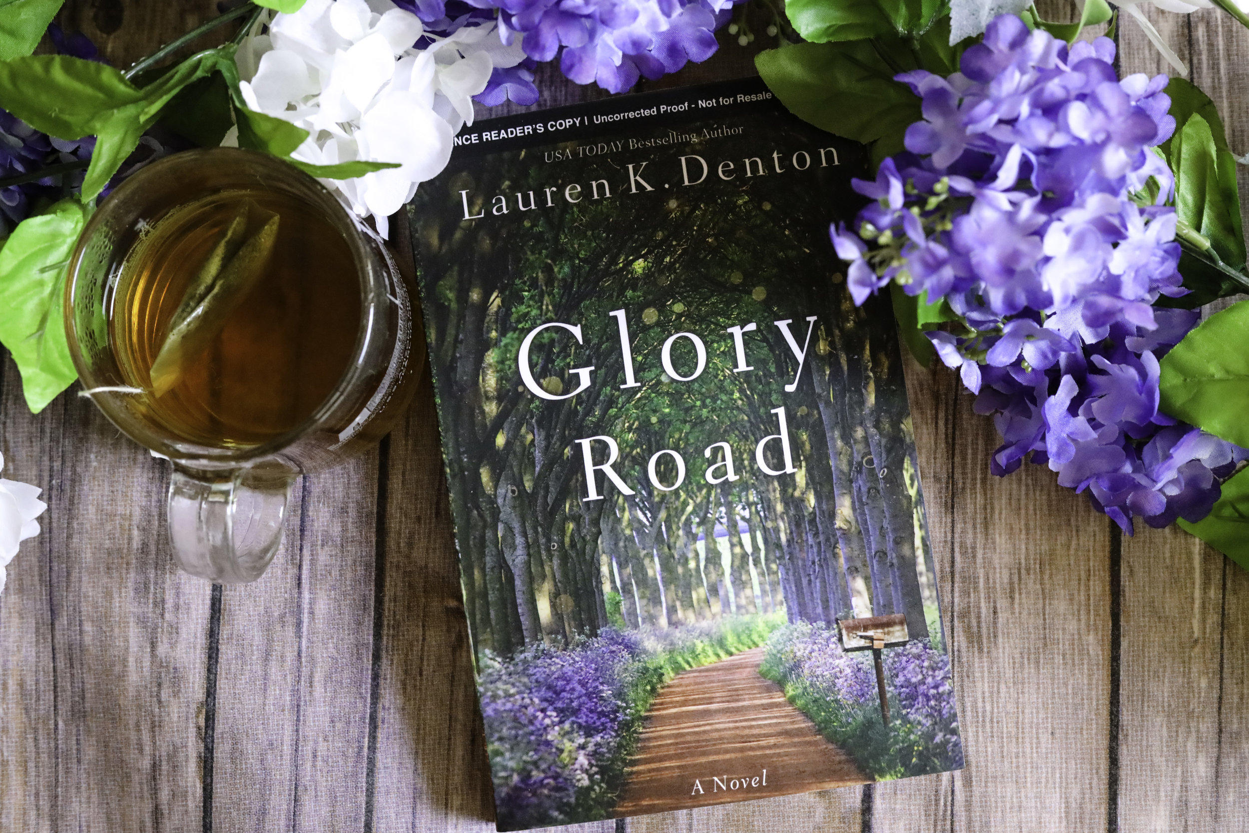 glory road lauren denton book review