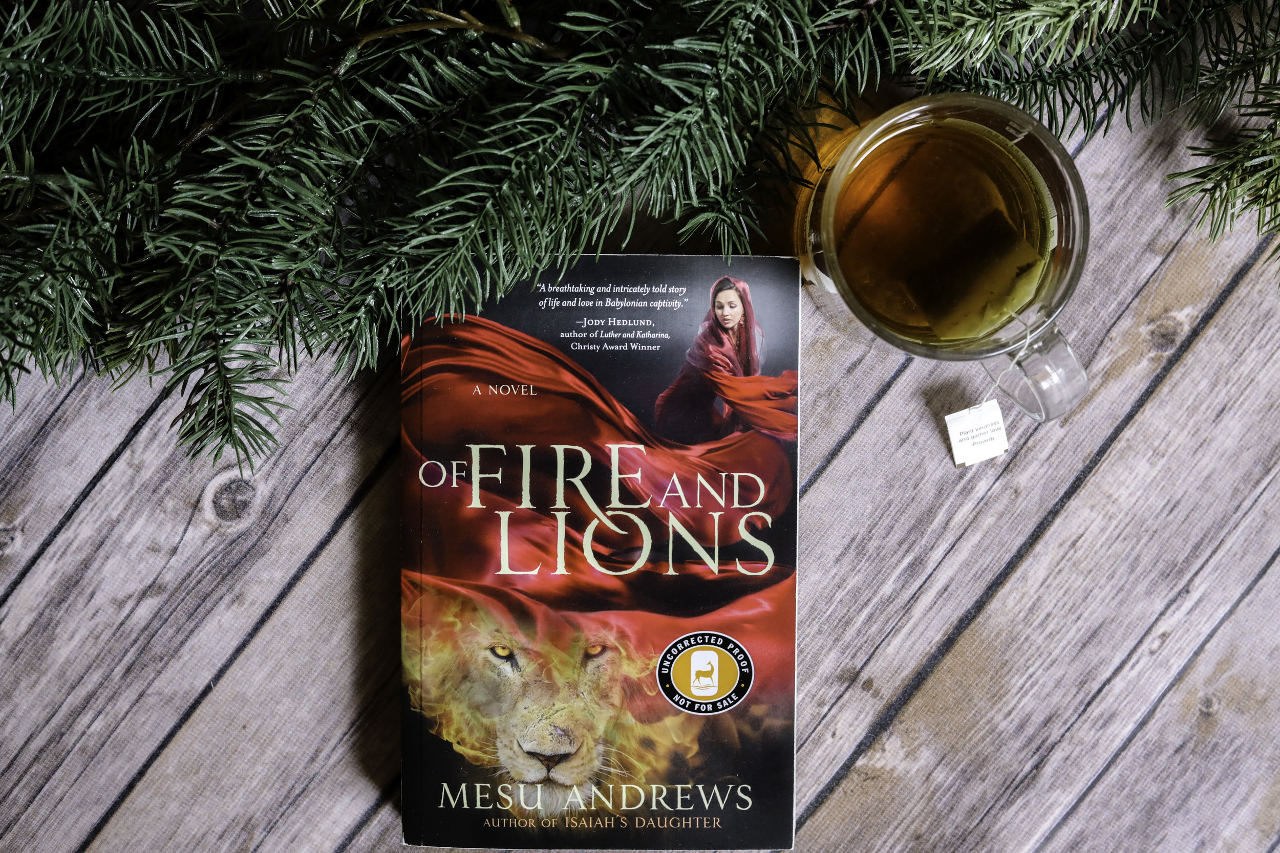 of fire and lions mesu andrews book review