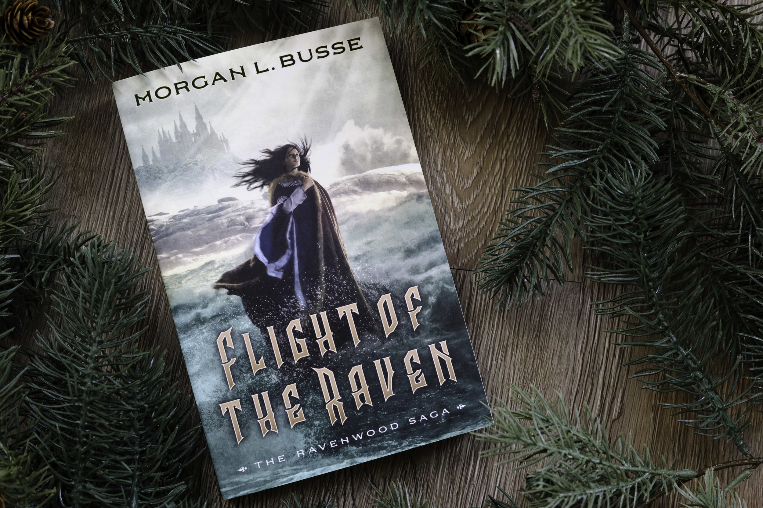 flight of the raven morgan l busse book review