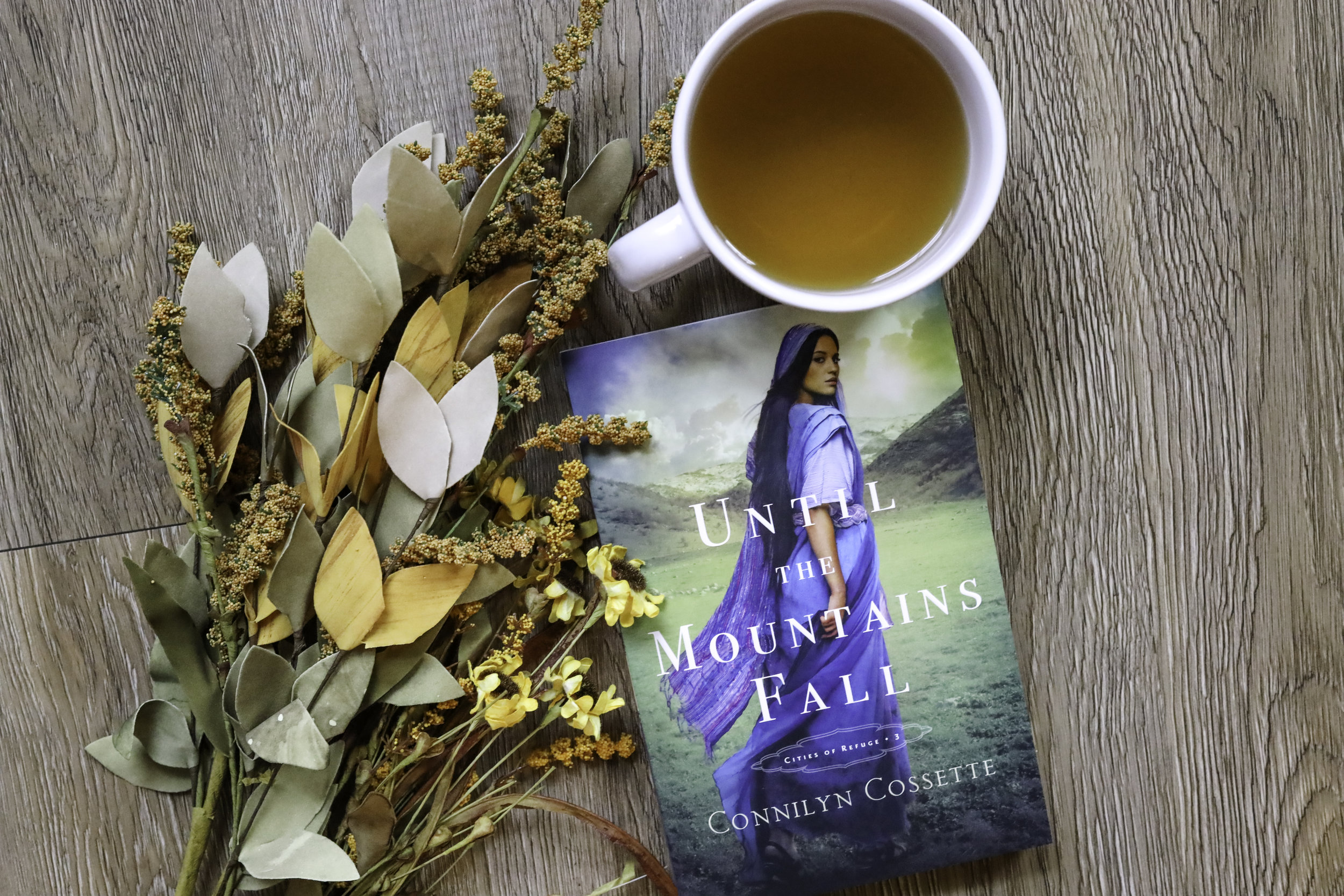until the mountains fall connilyn cossette book review