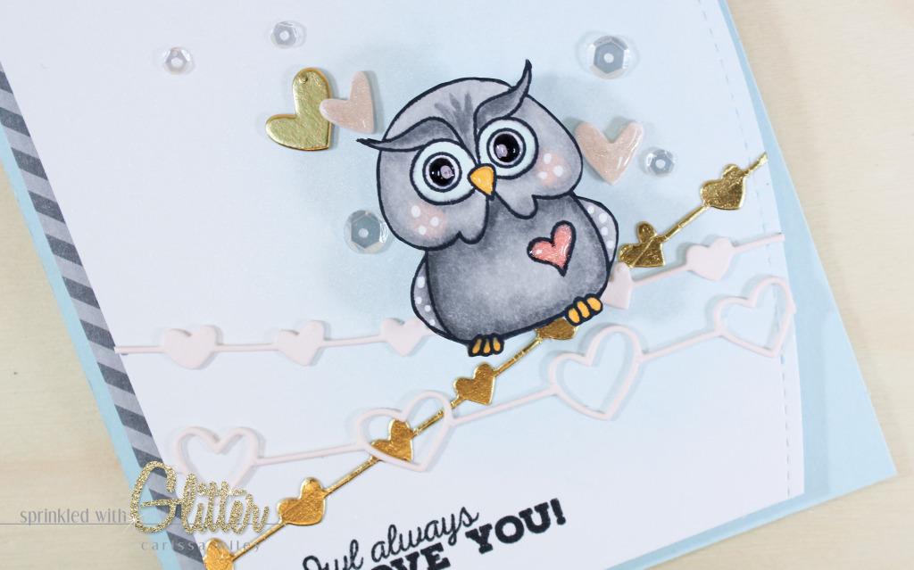 Owl On A Wire Finals Watermark-13_zpshvsc1v9e.jpg