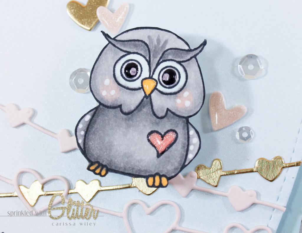 Owl On A Wire Finals Watermark-20_zpslxrtwii4.jpg