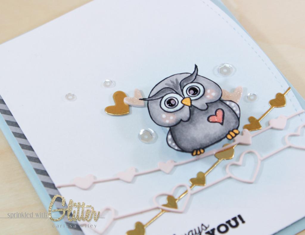 Owl On A Wire Finals Watermark-23_zpsl9wzxr2d.jpg