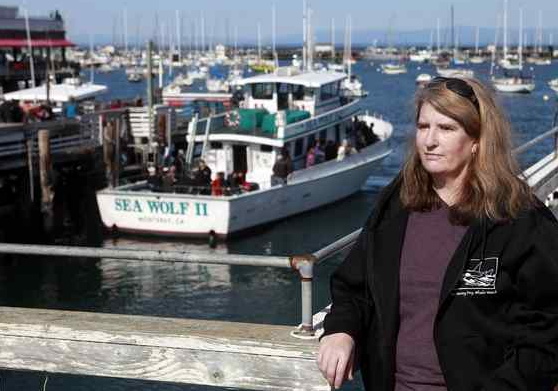 Marine Biologist Violates Probation When She Gets Too Close to Sea Otter  The Monterey Herald