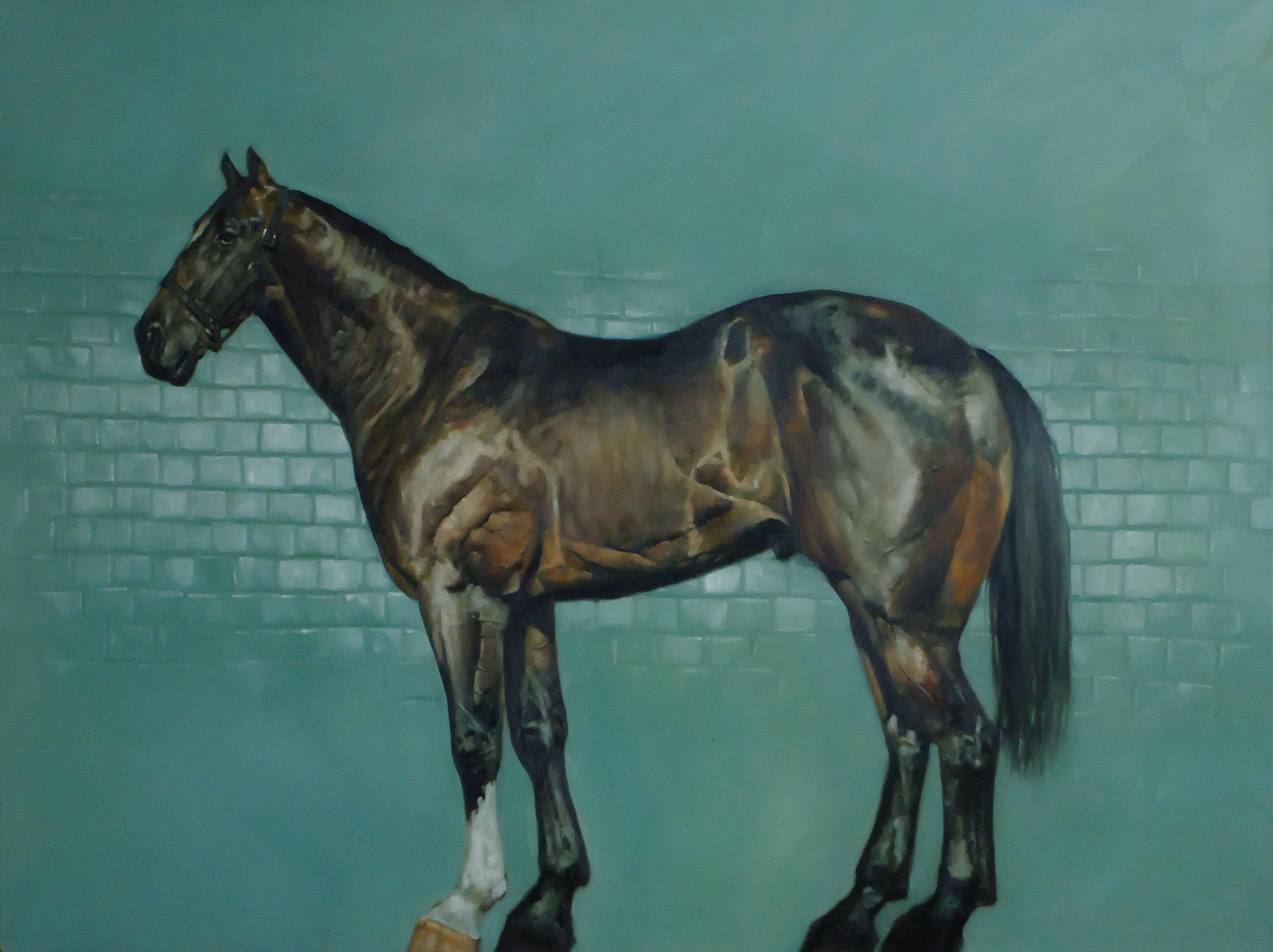 horse7.jpg