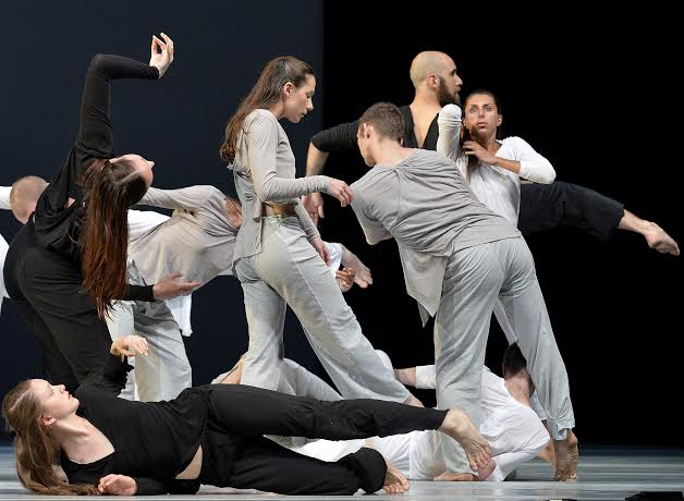 Untitled 0-12: Black, White and Gray  American Dance Festival - DPAC