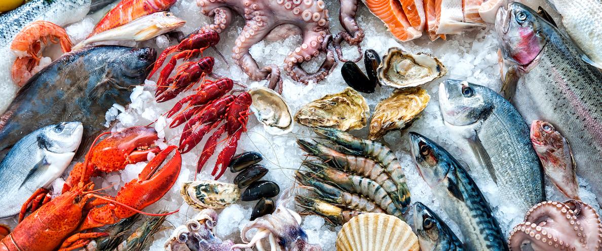 Vanguard Serves Meat & Seafood