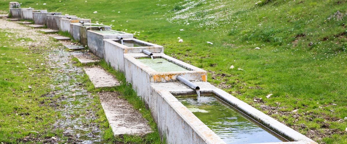 Vanguard Serves Water Treatment