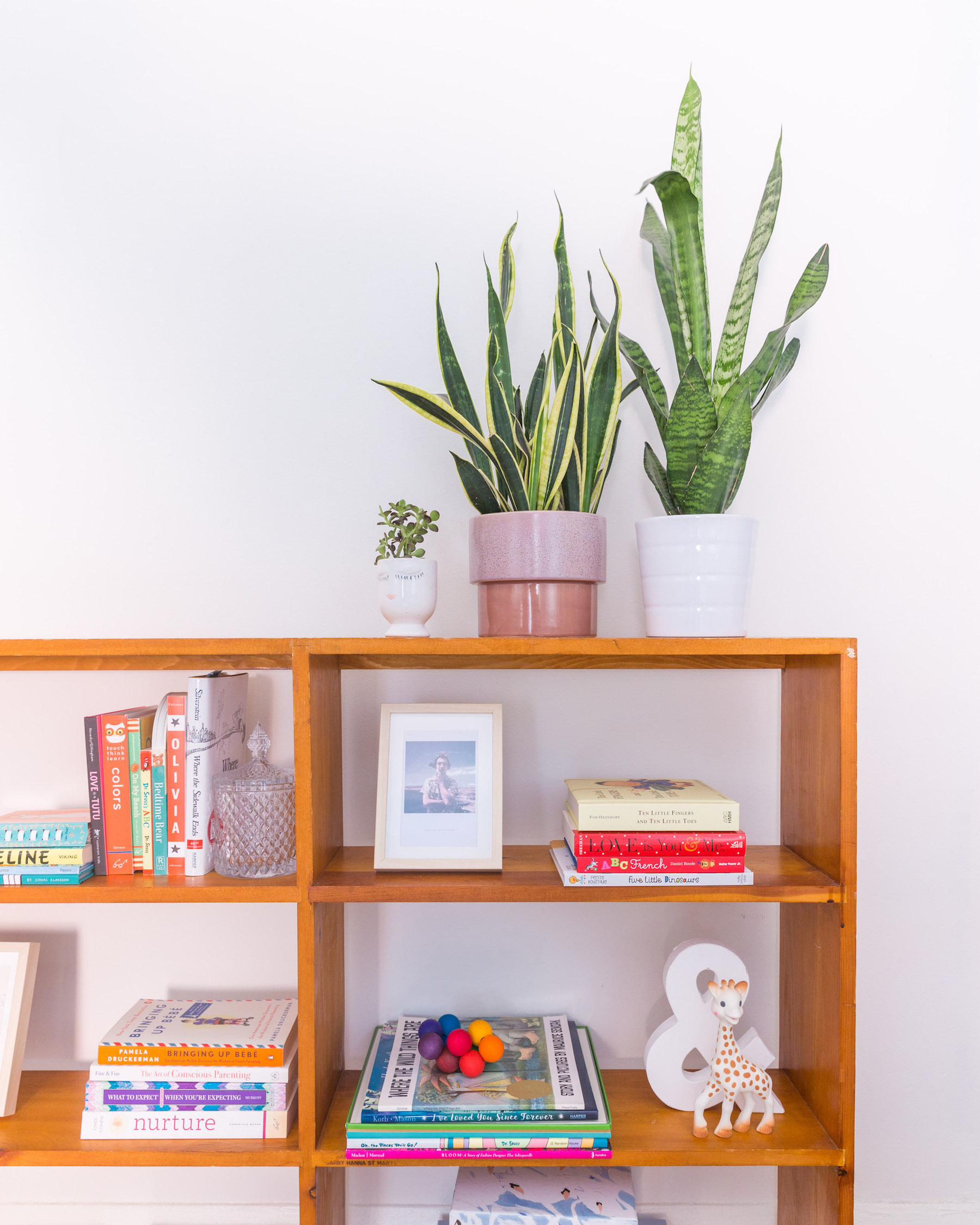 baby seale nursery - bookshelf