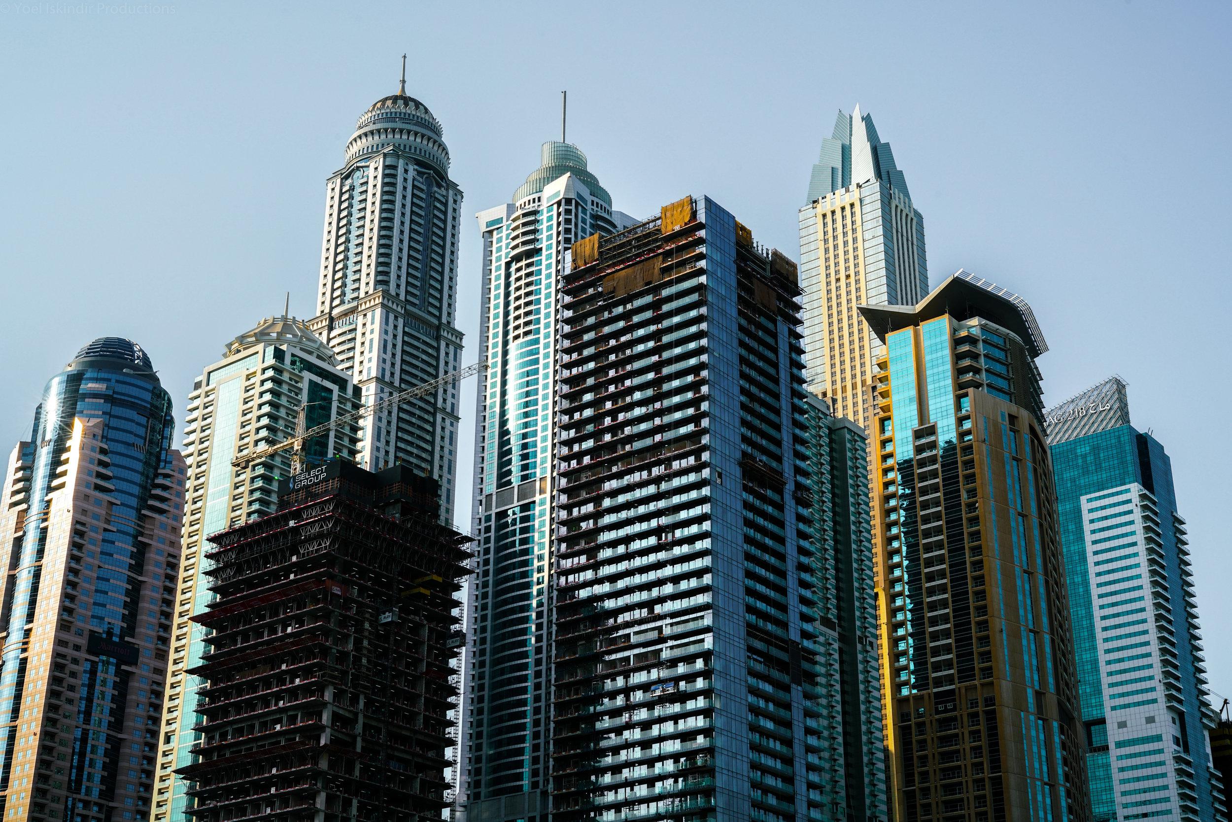 marina skyline (1 of 1).jpg
