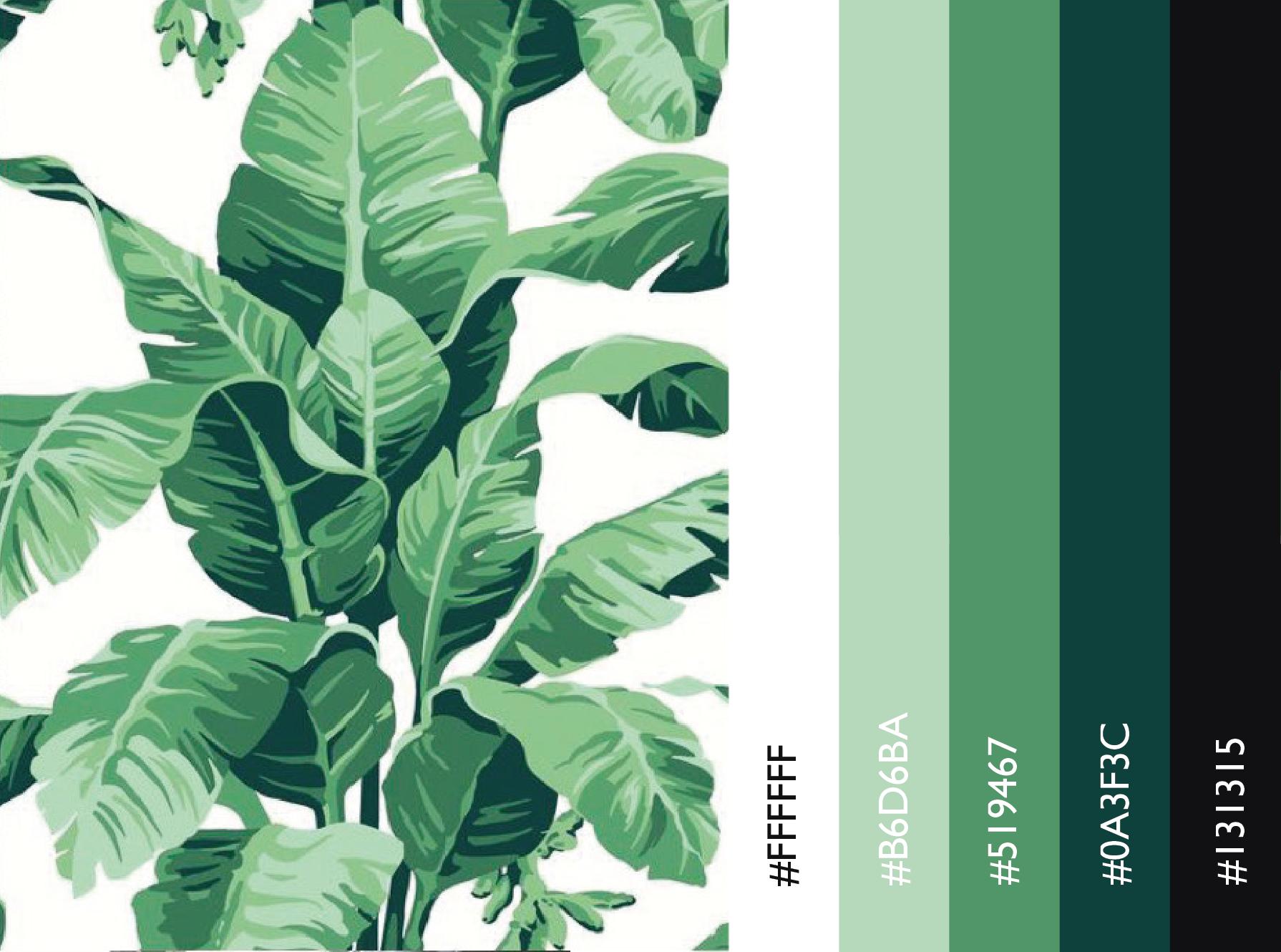 color palette1.png