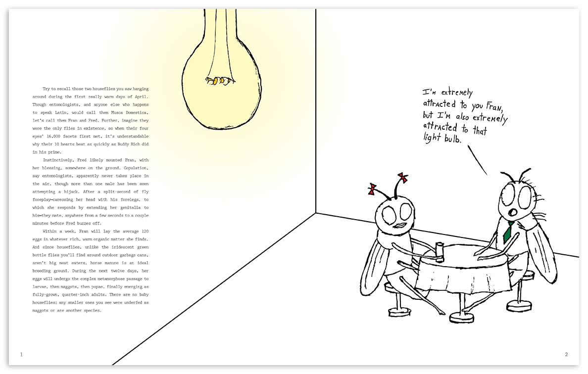 flybook-page-1.jpg