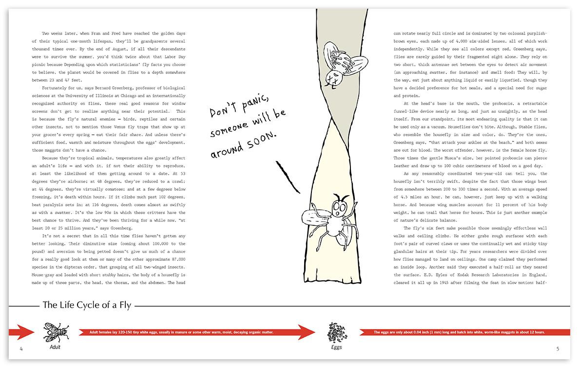 flybook-page-2.jpg