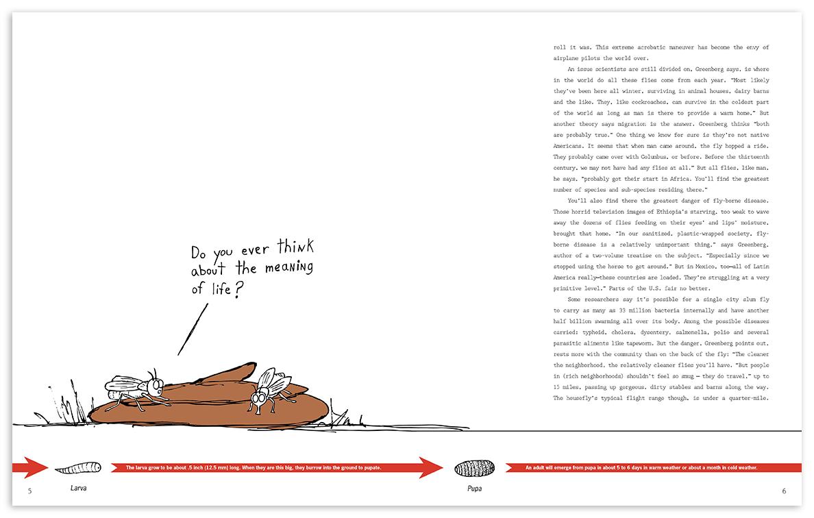 flybook-page-3.jpg