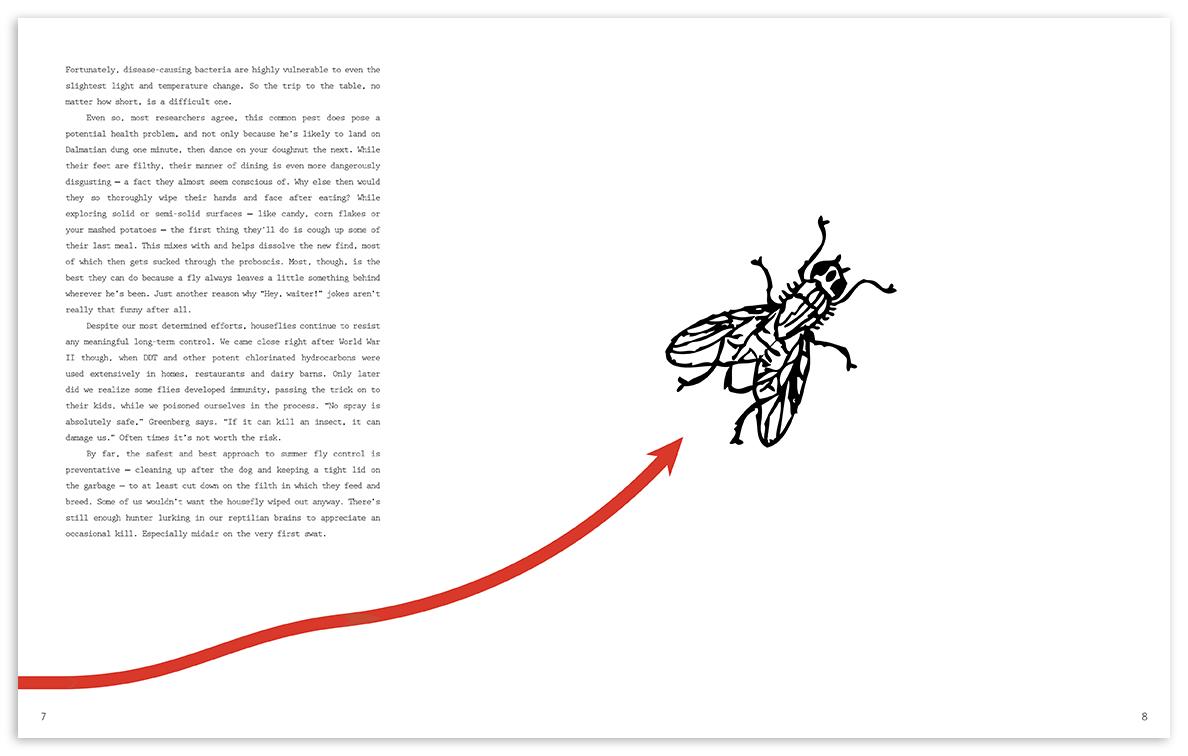 flybook-page-4.jpg