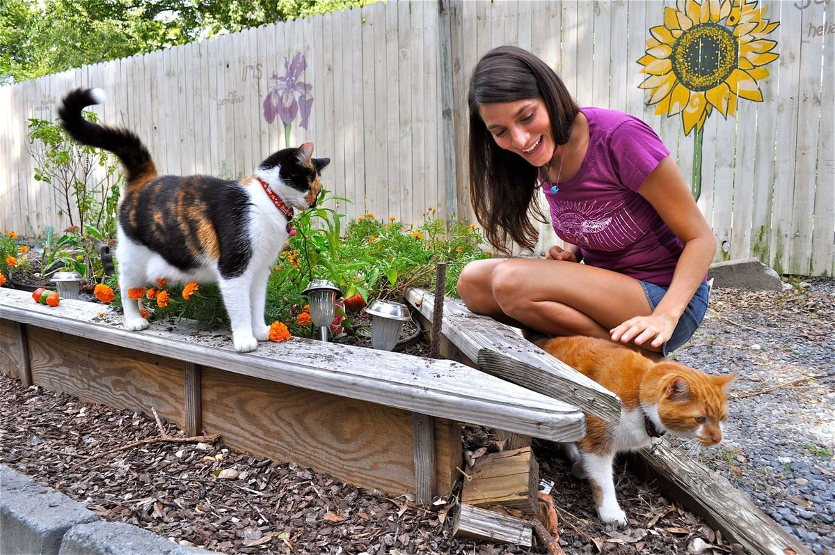 Among the ecofriendly features at NotSo Hostel is a small vegetable and flower garden, tended by manager Vikki Matsis (and two cats), amid its courtyard parking area.