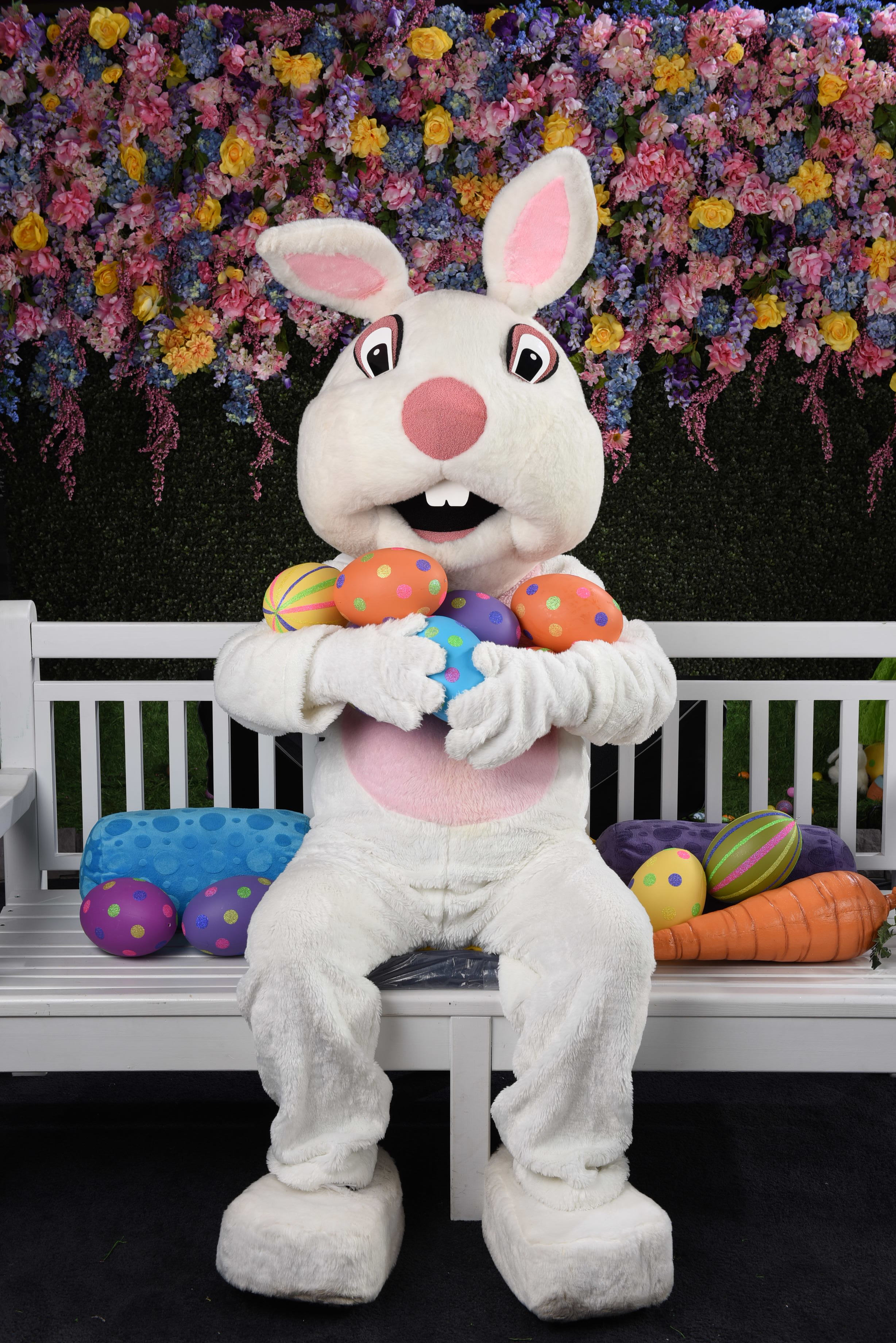Happy Easter! - Easter Bunny's Hours:April 8th -20thMonday to Thursday 10am-2pmFriday to Sunday 10am-2pm, 3pm-5pmMind the gap from 2-3pm. The Easter Bunny goes for a carrot break!