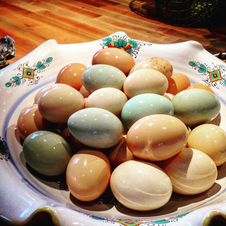 Orchard Kitchen Fresh Eggs
