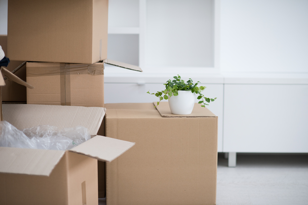 What You'll Need When Moving Home