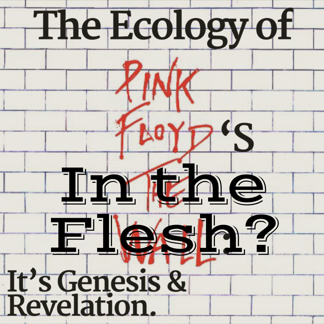 Floyd Book - %22In the Flesh%22.png