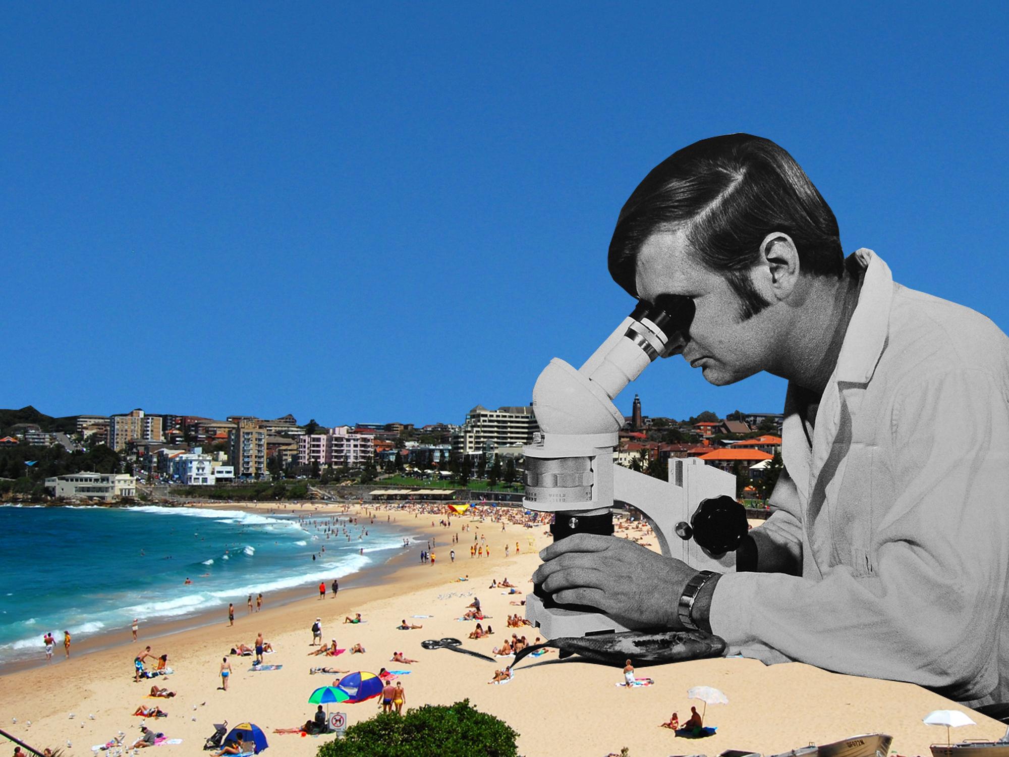 [coogee beach inspector]