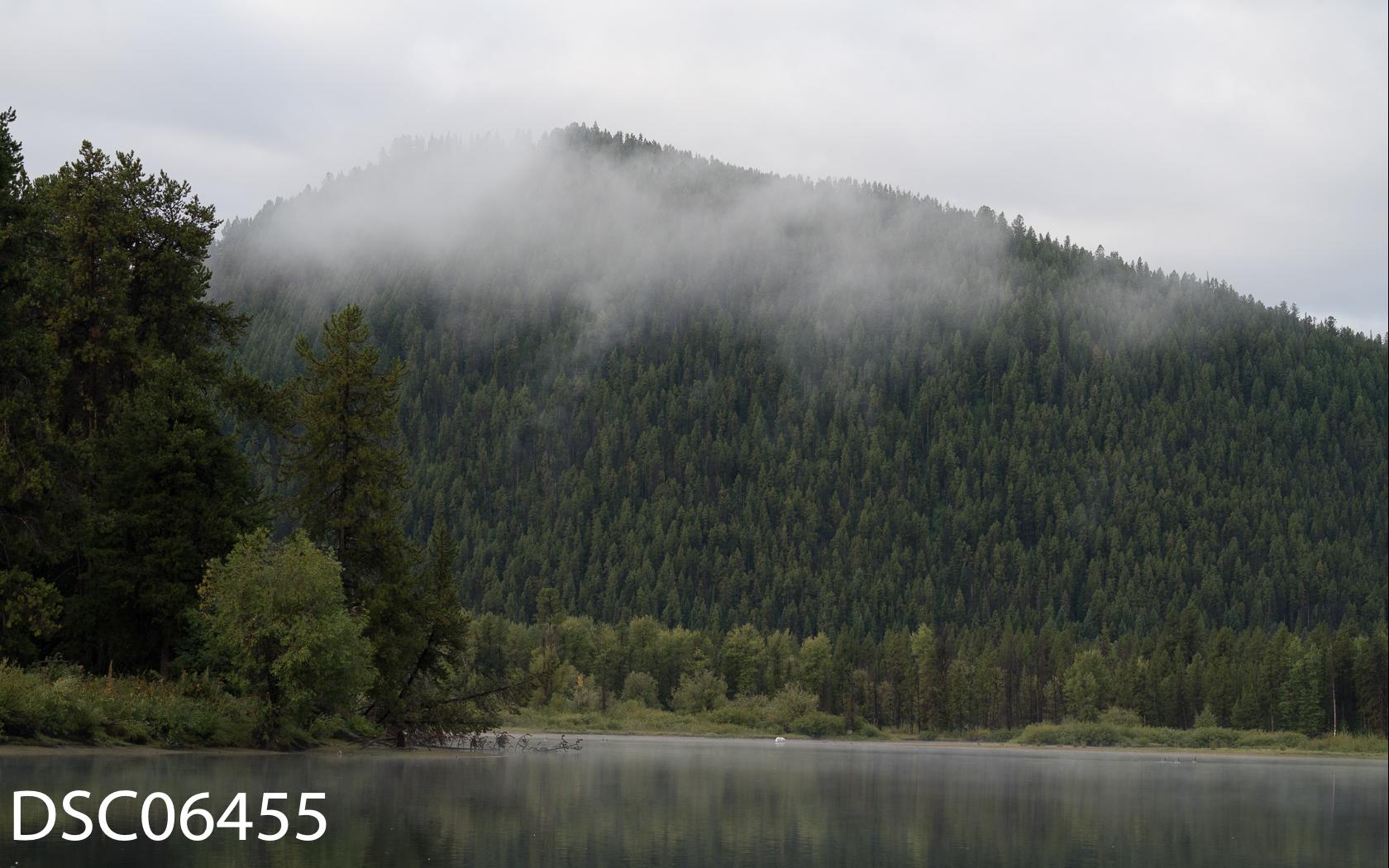 Landscapes-26.jpg